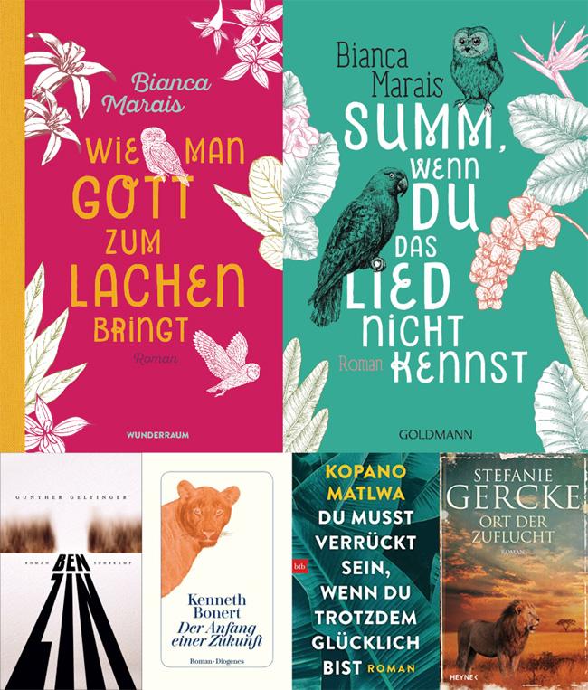 Collage 6 Bücher Südafrika Tintentick Blog